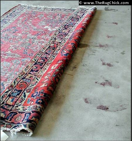Running vacuum along the back of this rug shakes out pounds of soil.